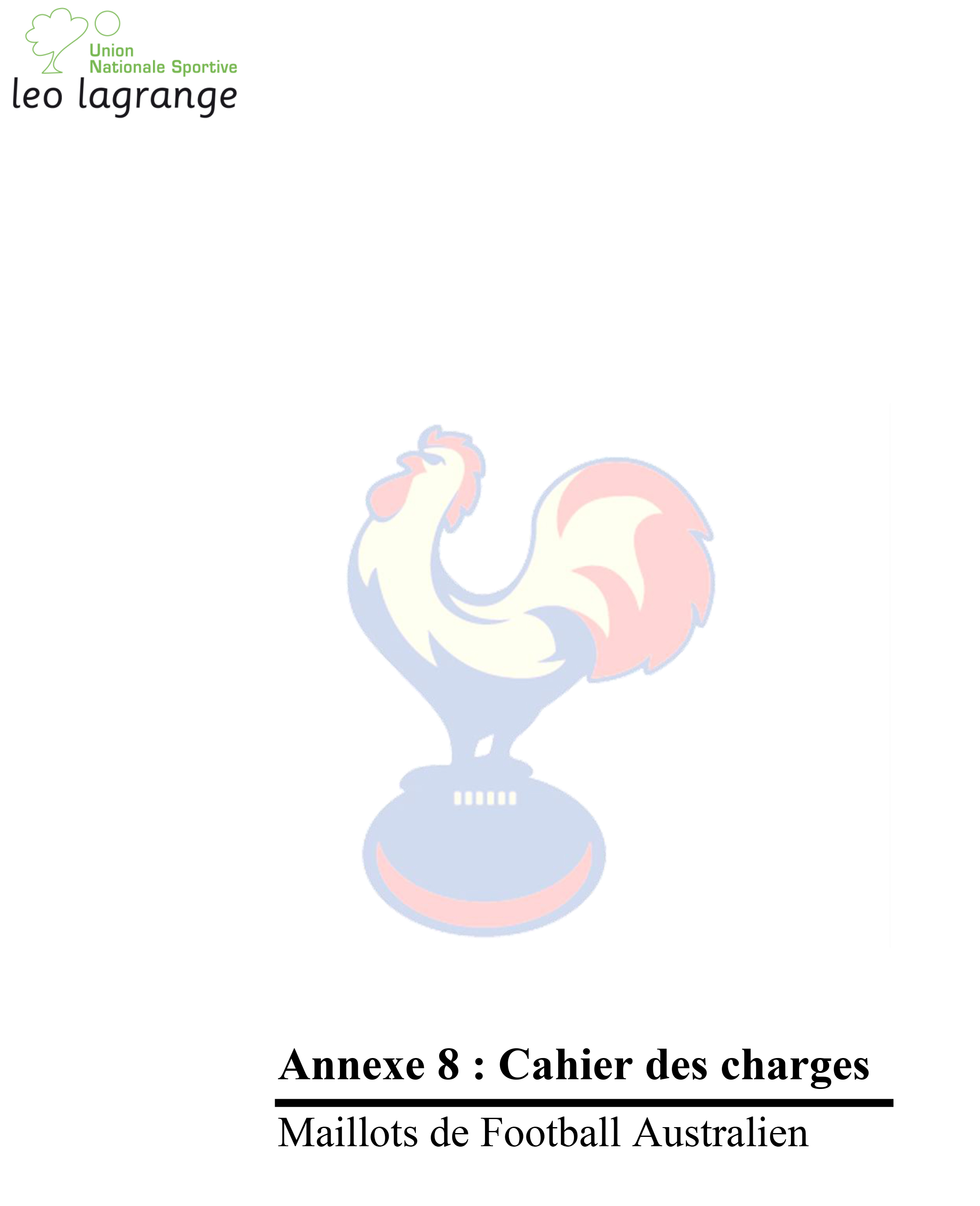 Annexe 8 Cahier des charges Maillots-1